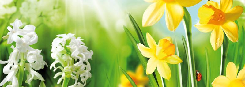 Kup kalosze - wiosenne porządki czas zacząć!