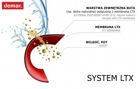 system_LTX