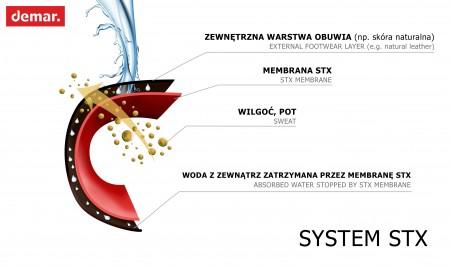 system_STX