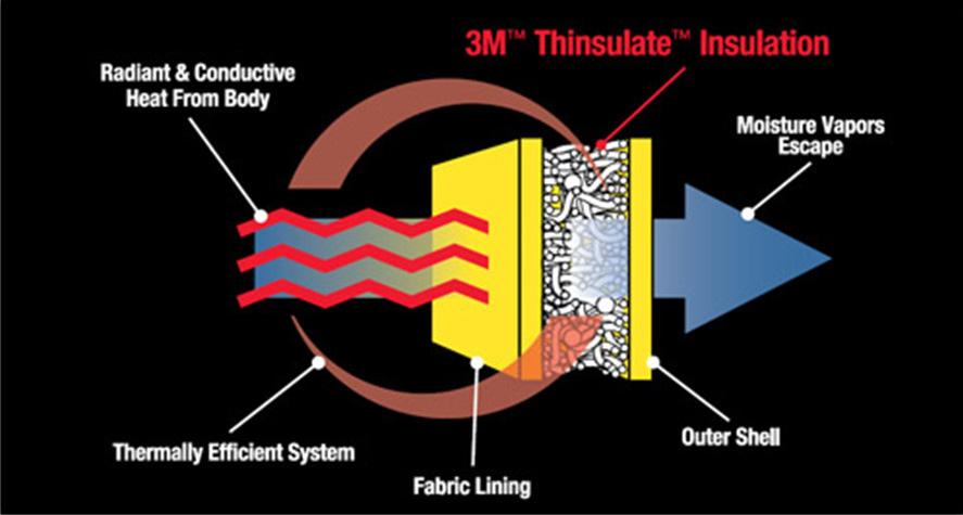 3M-Thinsulate